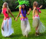 день рождения в стиле гавайской вечеринки сценарий