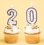 20 лет совместной жизни какая свадьба
