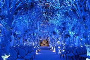 особенности проведения свадьбы зимой