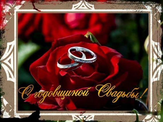Анечка, от всей души поздравляю вас с годовщиной