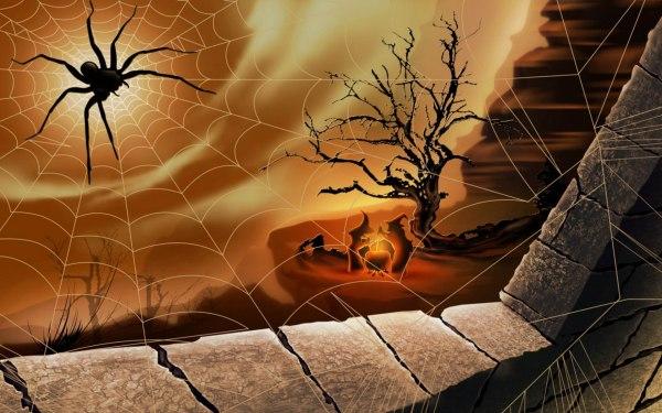что значит увидеть паука на Хэллоуин